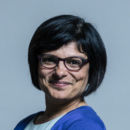 Thangam Debbonaire photo